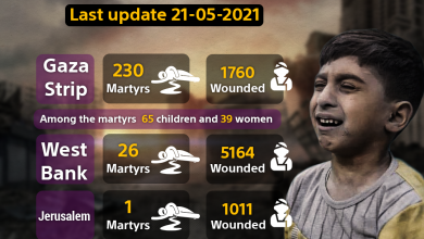 Photo of 241 martyrs and 7802 wounded are the result of the ongoing Israeli aggression on Palestine