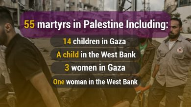 Photo of 55 martyrs in Palestine Including: