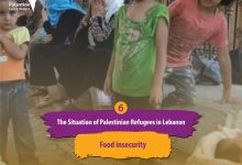 Photo of Food insecurity 94.5% of Palestinian refugees suffer from Food Insecurity
